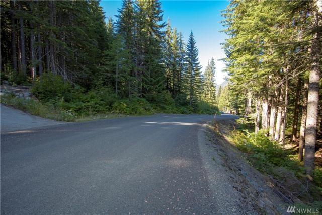 46 Snoqualmie Dr, Snoqualmie Pass, WA 98068 (#1145365) :: Ben Kinney Real Estate Team