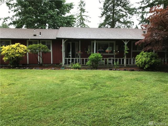 17427 Sargent Rd SW, Rochester, WA 98579 (#1145584) :: Ben Kinney Real Estate Team