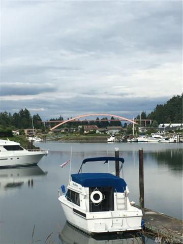 176 Suquamish Wy, La Conner, WA 98257 (#1145695) :: Ben Kinney Real Estate Team