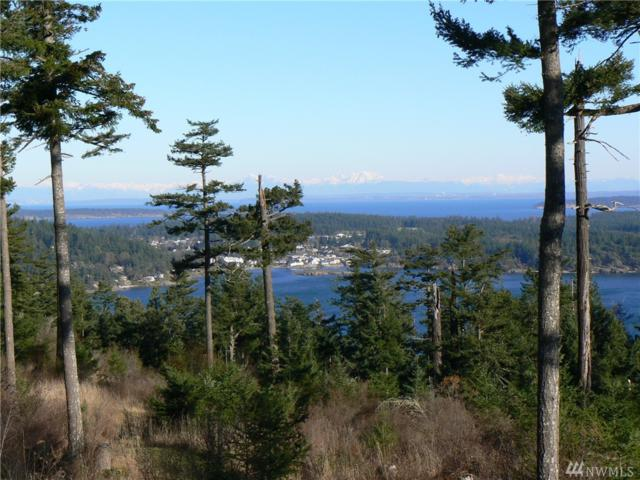 0 Village View Rd, Orcas Island, WA 98245 (#1145933) :: Ben Kinney Real Estate Team