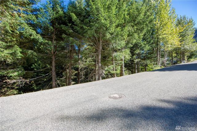 102 Snoqualmie Dr, Snoqualmie Pass, WA 98068 (#1146074) :: Ben Kinney Real Estate Team