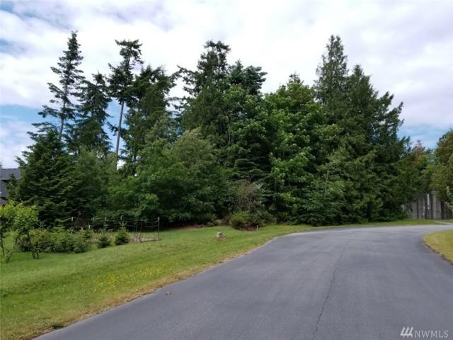 700 Crescent Dr, Camano Island, WA 98282 (#1146129) :: Ben Kinney Real Estate Team