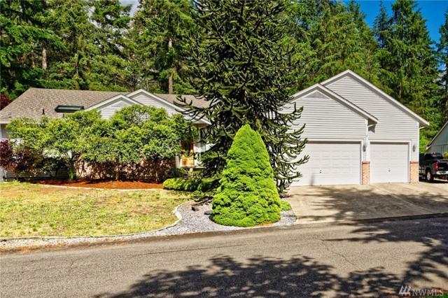 24711 48th Ave E, Graham, WA 98338 (#1146289) :: Ben Kinney Real Estate Team