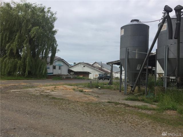 3382 Breckenridge Rd, Everson, WA 98247 (#1146461) :: Ben Kinney Real Estate Team