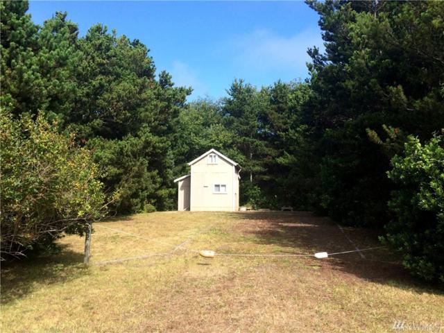 1352 Oceano, Grayland, WA 98547 (#1146569) :: Ben Kinney Real Estate Team