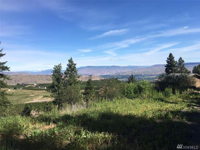 5556 Big Springs Ranch, Malaga, WA 98828 (#1146585) :: Ben Kinney Real Estate Team