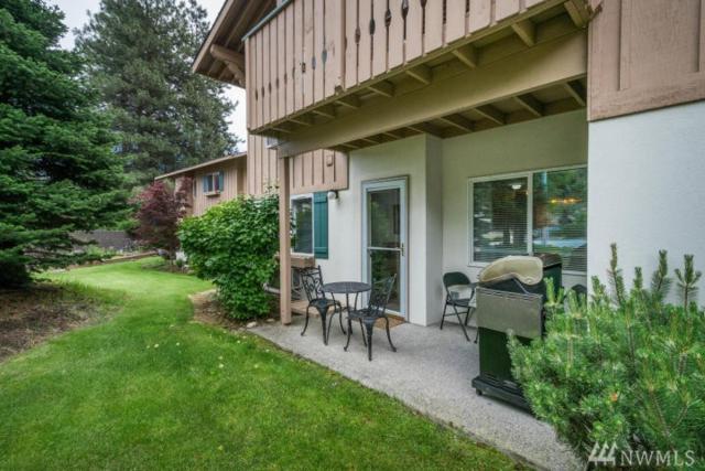 525 Alpine Place B2, Leavenworth, WA 98826 (#1146707) :: Ben Kinney Real Estate Team
