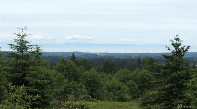 1-Lot 1 Haven Heights Dr, Sequim, WA 98382 (#1146746) :: Ben Kinney Real Estate Team