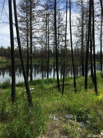 0-NHN Emerald Lake Rd, Okanogan, WA 98840 (#1146846) :: Ben Kinney Real Estate Team