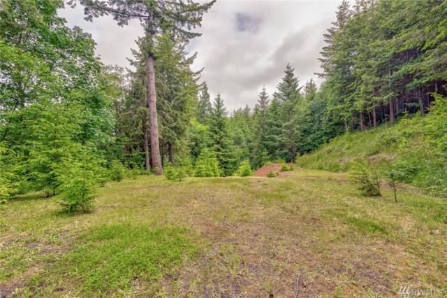 746 Germany Creek Rd, Longview, WA 98632 (#1147183) :: Ben Kinney Real Estate Team