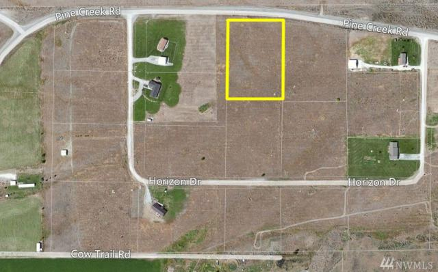 35 Horizon Dr, Tonasket, WA 98855 (#1147187) :: Ben Kinney Real Estate Team