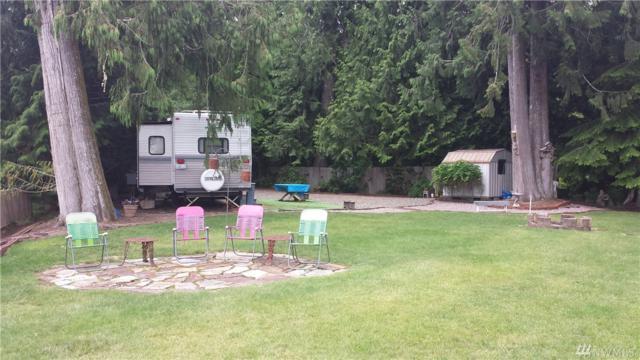 24 W Hoko Place, Elma, WA 98541 (#1147449) :: Ben Kinney Real Estate Team