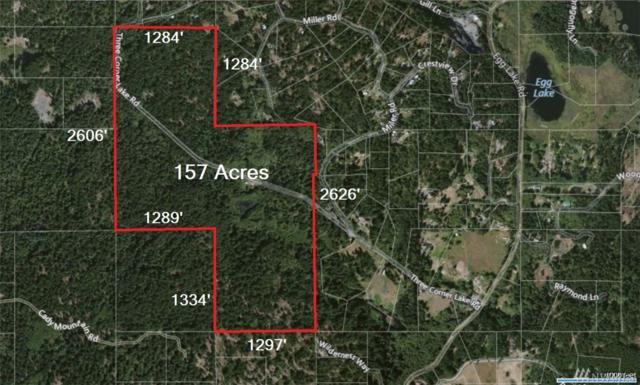 645 Three Corner Lake Rd, Friday Harbor, WA 98250 (#1147953) :: Ben Kinney Real Estate Team