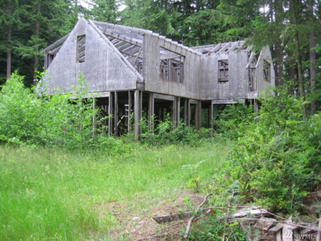 4040 Lone Lake Rd, Langley, WA 98260 (#1148001) :: Ben Kinney Real Estate Team