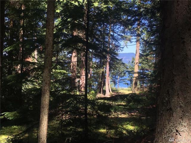 11-xxx Pass View Rd, Decatur Island, WA 98261 (#1148071) :: Ben Kinney Real Estate Team