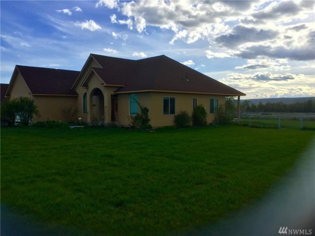 19966 Rd A.3 NE, Soap Lake, WA 98851 (#1148110) :: Ben Kinney Real Estate Team