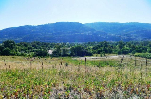 2031 Highway 7, Oroville, WA 98844 (#1148378) :: Ben Kinney Real Estate Team