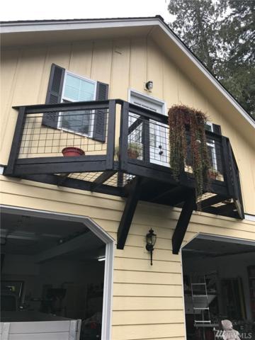 15031 NE Northshore Rd, Tahuya, WA 98588 (#1148704) :: Ben Kinney Real Estate Team