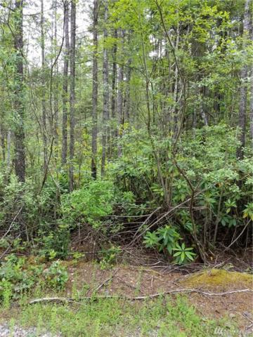 0-XX NE Pine Camp Rd, Tahuya, WA 98588 (#1148773) :: Ben Kinney Real Estate Team