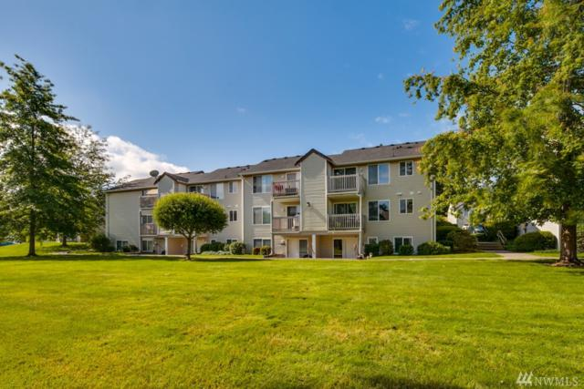 4242 Wintergreen Cir #164, Bellingham, WA 98226 (#1148907) :: Ben Kinney Real Estate Team