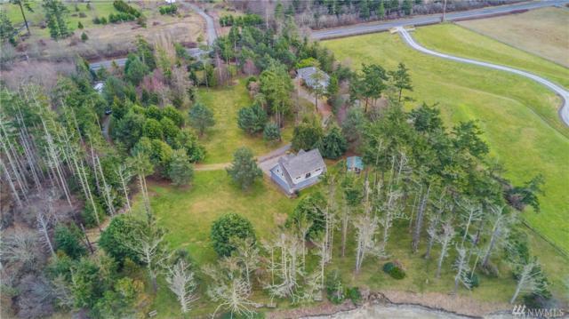 1257 West Beach Rd, Oak Harbor, WA 98277 (#1148924) :: Ben Kinney Real Estate Team