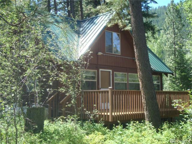 64 Mazama Pines Lane, Mazama, WA 98833 (#1148999) :: Ben Kinney Real Estate Team