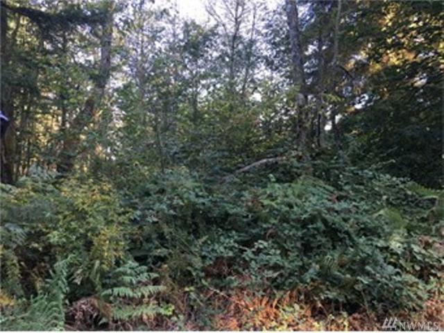 36120 108th Av Ct E, Eatonville, WA 98328 (#1149561) :: Ben Kinney Real Estate Team