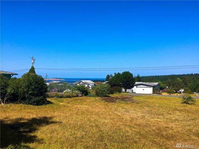 141 Ridge Drive, Port Townsend, WA 98368 (#1149592) :: Real Estate Solutions Group