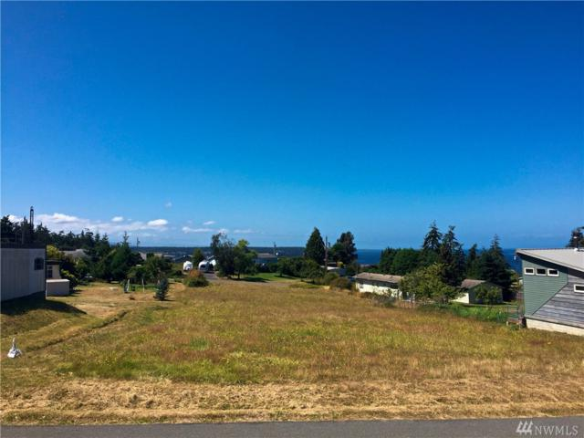 142 Alder Drive, Port Townsend, WA 98368 (#1149594) :: Real Estate Solutions Group