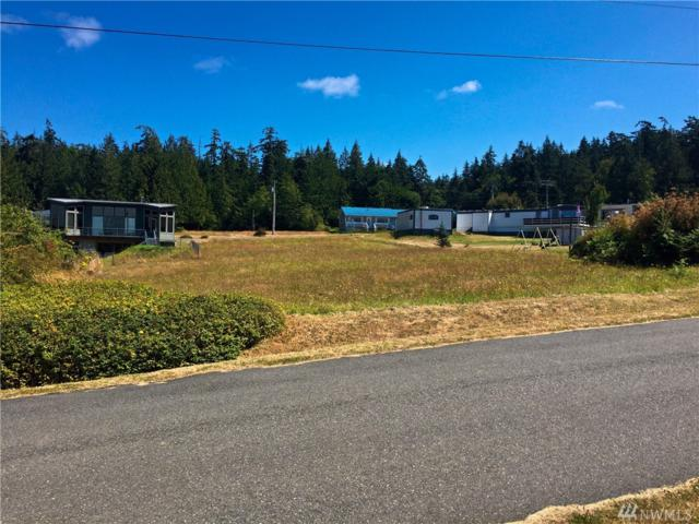 171 Pine Dr, Port Townsend, WA 98368 (#1149596) :: Real Estate Solutions Group