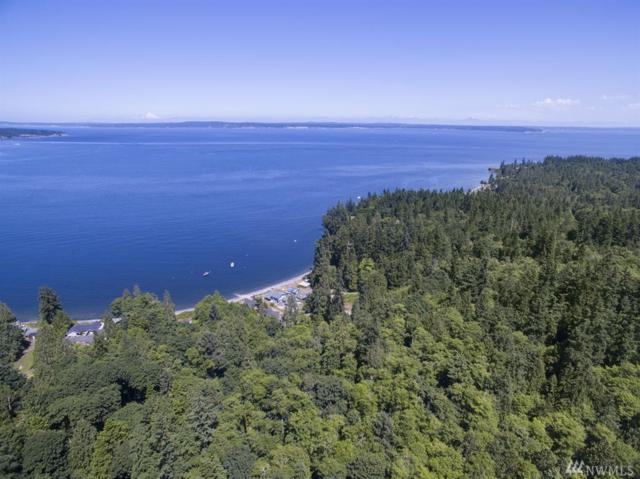 71 Beach Crest Lane, Port Ludlow, WA 98365 (#1149835) :: Ben Kinney Real Estate Team