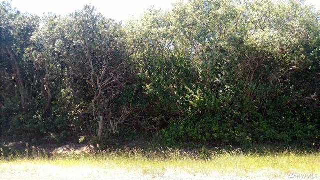 341 S Wynoochee Dr SW, Ocean Shores, WA 98569 (#1149874) :: Ben Kinney Real Estate Team