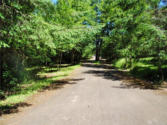 183 Skyview Rd, Woodland, WA 98674 (#1149924) :: Ben Kinney Real Estate Team