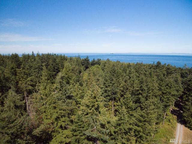24 56th St, Port Townsend, WA 98368 (#1150153) :: Real Estate Solutions Group