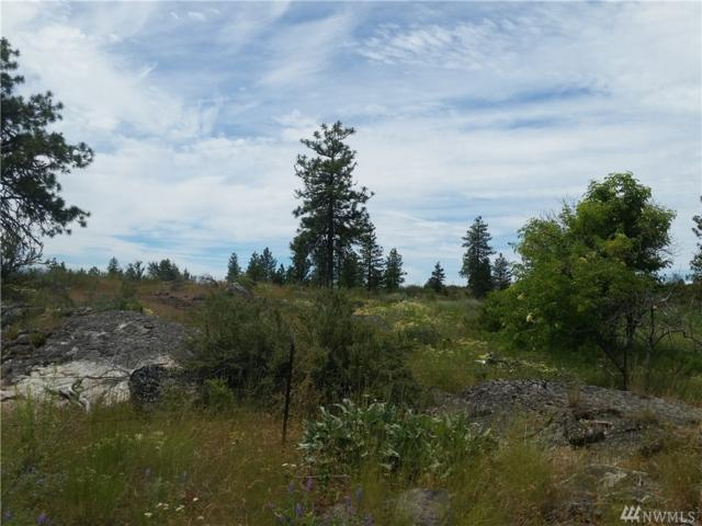0-TBD Cameron Lake Loop Rd, Okanogan, WA 98840 (#1150192) :: Ben Kinney Real Estate Team
