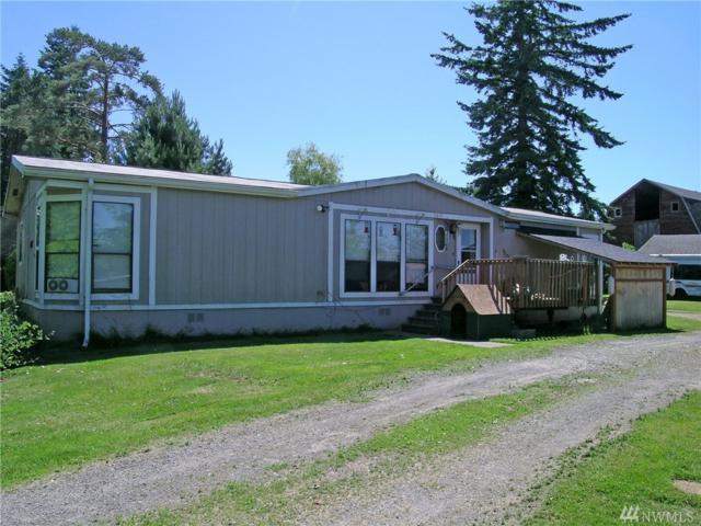 3857 Britton Rd, Bellingham, WA 98226 (#1150294) :: Ben Kinney Real Estate Team
