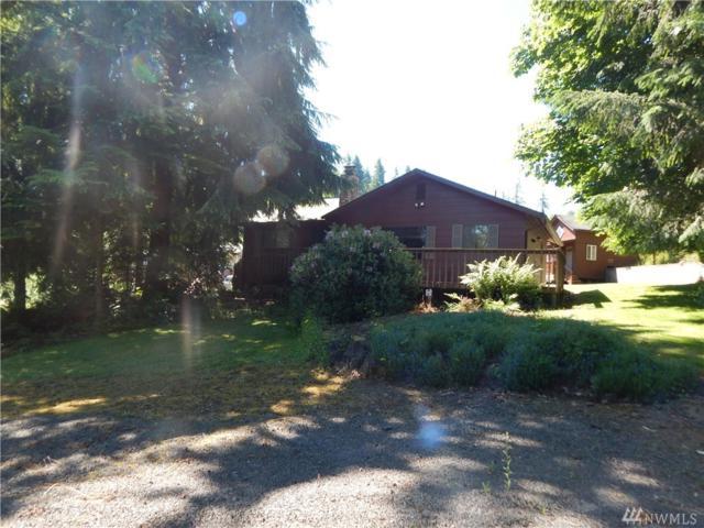 205 Lakeview Dr, Mossyrock, WA 98564 (#1150300) :: Ben Kinney Real Estate Team