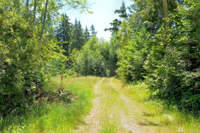 9999 Critter Country Trail Lot 9, Sequim, WA 98382 (#1150619) :: Ben Kinney Real Estate Team