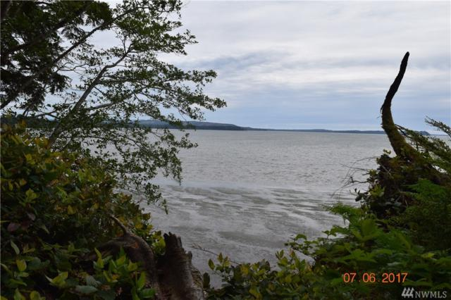 0 101 Hwy, South Bend, WA 98586 (#1150750) :: Homes on the Sound