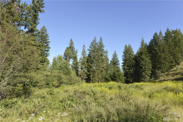0-- LOT 4 Alder Rd, Twisp, WA 98856 (#1150838) :: Ben Kinney Real Estate Team