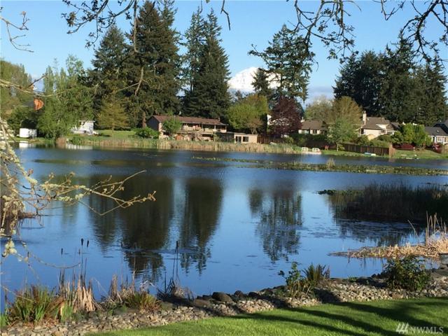 13125 Spanaway Loop Rd S, Tacoma, WA 98444 (#1151046) :: Ben Kinney Real Estate Team