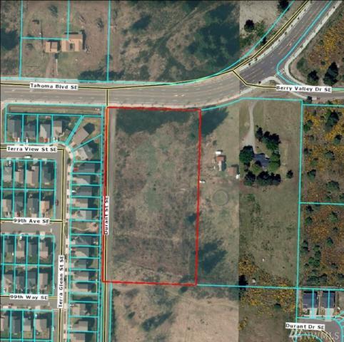 15025 Tahoma Blvd SE, Yelm, WA 98597 (#1151507) :: Ben Kinney Real Estate Team