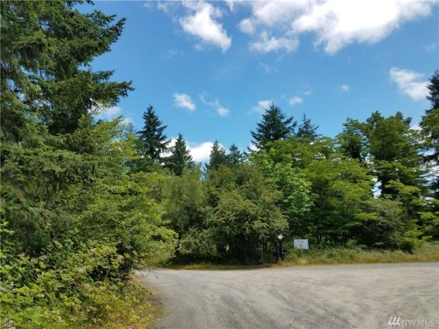 41600 Mountain Hwy E, Eatonville, WA 98328 (#1152276) :: The DiBello Real Estate Group