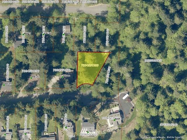 44646 SE 151st Place, North Bend, WA 98045 (#1153244) :: Pickett Street Properties