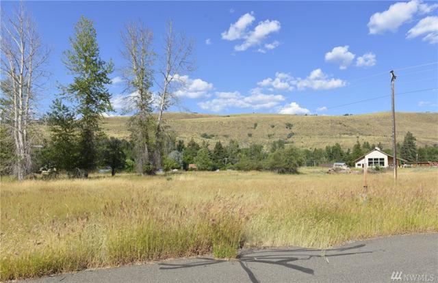 0-Lot 12 Greenwood Rd, Winthrop, WA 98862 (#1153339) :: Brandon Nelson Partners