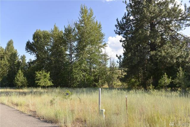 0-Lot 6 Greenwood Rd, Winthrop, WA 98862 (#1153343) :: Brandon Nelson Partners