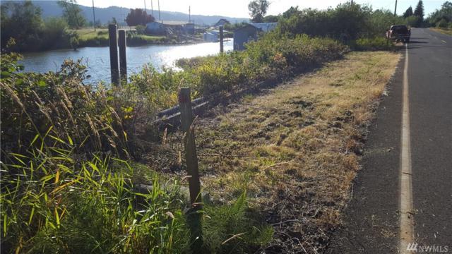 204 W Little Island Rd, Cathlamet, WA 98612 (#1153500) :: Ben Kinney Real Estate Team