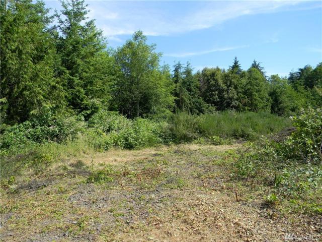 87 Garten Rd, Port Ludlow, WA 98365 (#1153531) :: Ben Kinney Real Estate Team