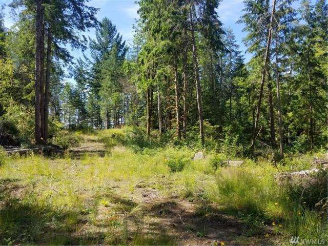 0-XX Tahuya Valley Dr W, Tahuya, WA 98588 (#1153716) :: Ben Kinney Real Estate Team