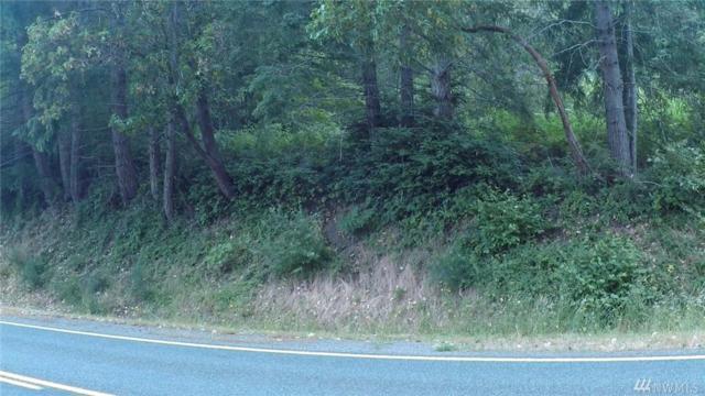 0-57 & 58 NE North Shore Rd., Belfair, WA 98528 (#1153793) :: Ben Kinney Real Estate Team